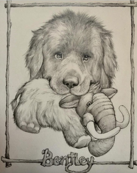 Bentley in pencil